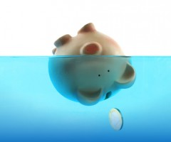Money Pig in Water