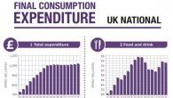 Household Expenditure Infographic